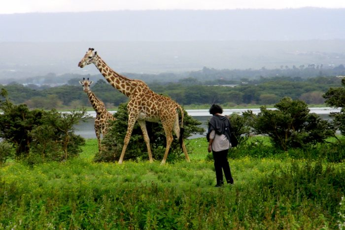 Naivasha day image 700x466 - Christmas & New Year Packages
