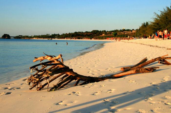 8 Days Tanzania and Zanzibar Flying Safari