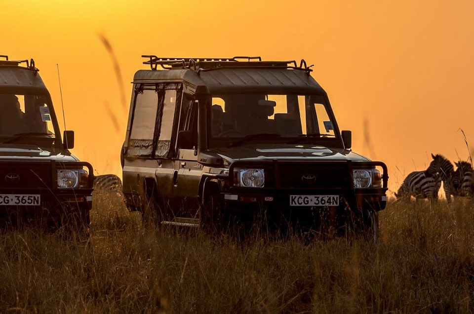 banner themara 960x636 - Top Safari Tours Deals you Cannot Miss this 2021